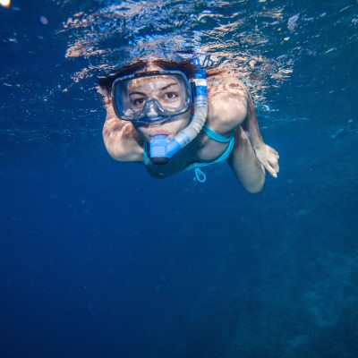 Snorkeling trip from dive boat